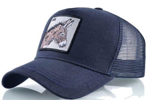 קולקצית החיות - כובע חמור