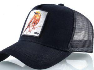 ציפור (שחור)