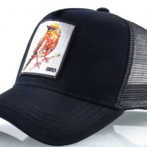קולקצית החיות - דגם Black Bird
