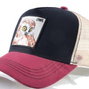 קולקצית החיות כובע הינשופים