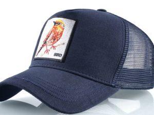 ציפור (כחול)