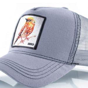 קולקצית כובעי החיות כובע הציפור