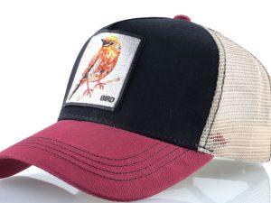 ציפור (אדום)
