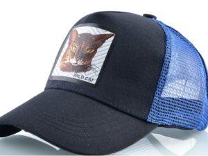 חתול פרא (כחול)