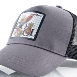 הכובעים עם החיות - כובע חיות תוכי אפור