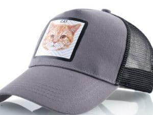 חתול (אפור)