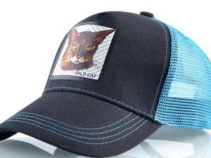 חתול פרא (תכלת)