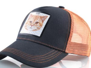 חתול (כתום)