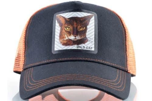 קולקצית כובעי החיות - כובע הנמר