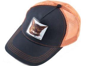 חתול פרא (כתום)