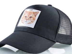 חתול (שחור)