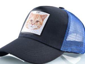 חתול (כחול)