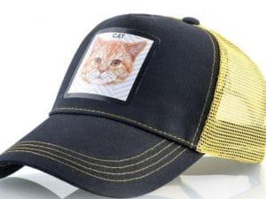 חתול (צהוב)