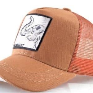 כובע חיות הפיל הכתום